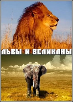 Львы и великаны / Lions and Giants on the Edge (2008) SATRip