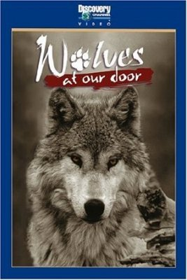 Волки за порогом / Wolves at our doors (1999) TVRip