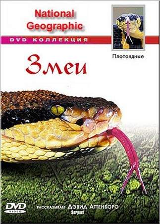 National Geographic: Гремучие змеи / King Rattler (1999) DVDRip