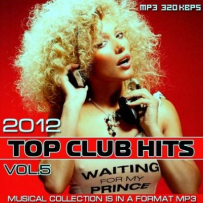 Top Club Hits Vol.5 (2012)