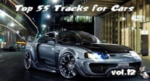 VA - Top 55 Tracks for Cars Vol.12 (2012) MP3