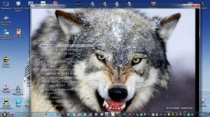 Wolf USB Installation 3 Windows (RUS/ENG/2012) Fixed